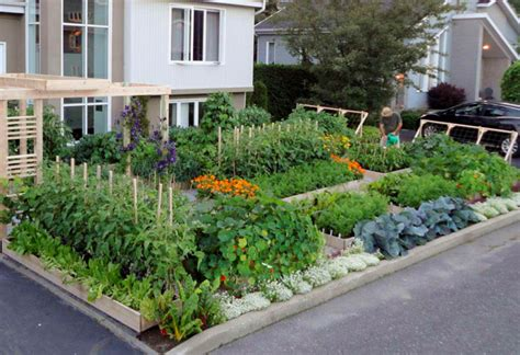 homeofficedecoration urban vegetable gardening