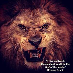 Lion Quotes And Sayings. QuotesGram