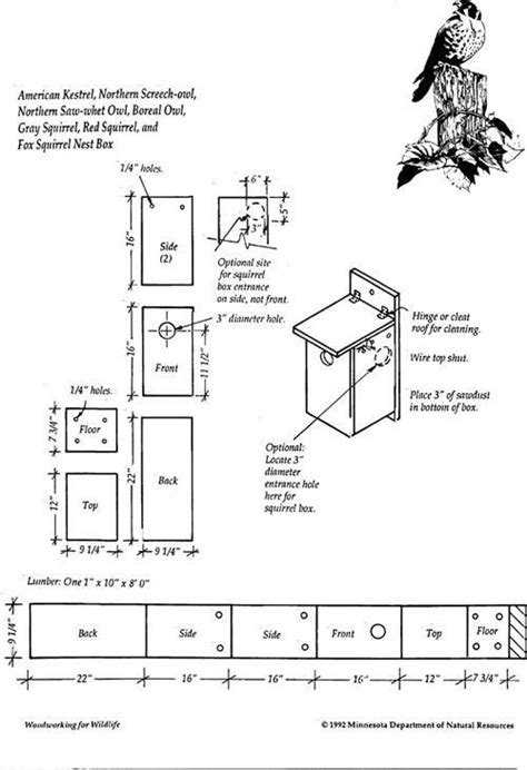 kestrel bird house plans  home plans design