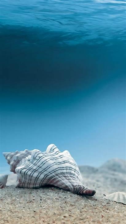 Underwater Sea Iphone Shells Ocean Wallpapers Cool