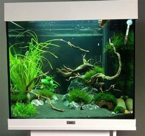 aquarium juwel lido 120 aquarium juwel lido 120 zoeken aquarium aquariums and fish tanks
