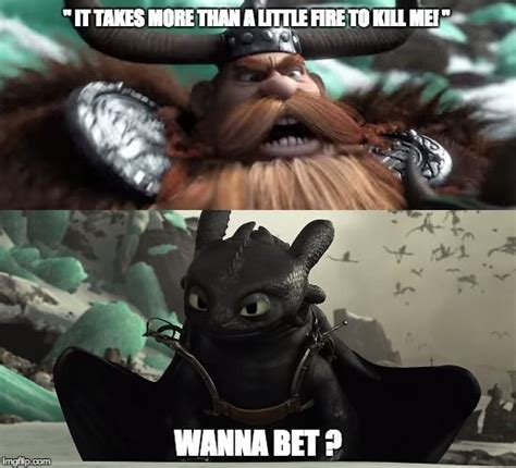 How To Train Your Dragon Memes - best 25 toothless funny ideas on pinterest toothless cat cute toothless and funny kittens