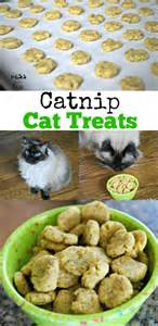 cat treats recipes catnip cat treats recipe mess for less