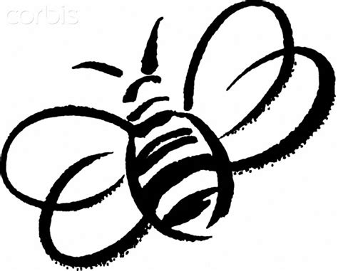 bee outline clipart   cliparts  images