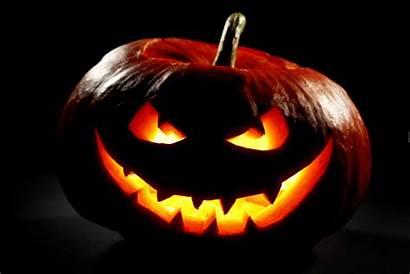 Halloween Pumpkin Dynia Tapety Dark Hintergrund Desktop