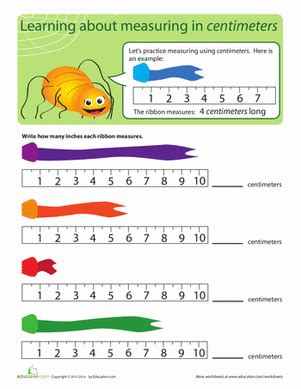 measurement length in centimeters worksheet education