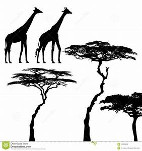 african animal silhouettes - giraffes and acacia | Bush ...