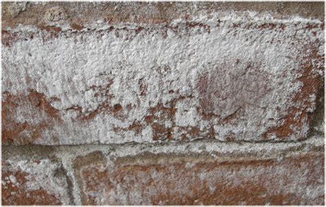 mur interieur humide que faire du salpetre sur mon mur tout pratique