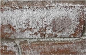 Humidité Mur Extérieur : du salpetre sur mon mur tout pratique ~ Premium-room.com Idées de Décoration