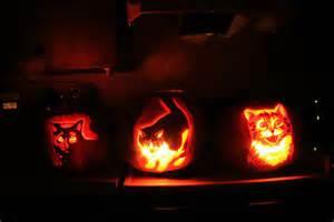 Evil Cheshire Cat Pumpkin Stencil by 28 Halloween Cat Pumpkin Stencils For A Spooky Halloween