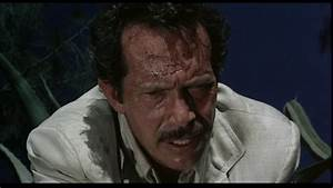 Screen Pages: Bring me the head of Alfredo Garcia [1974]