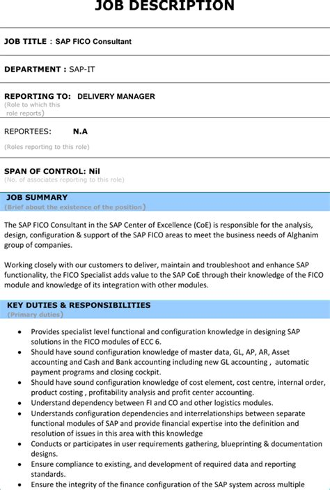 Module Resume by Sap Fi Module Resume Format Template For Free