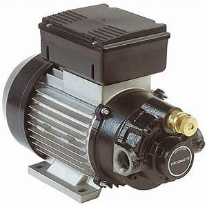 Pompe A Huile Electrique : pompe huile lectrique 220v 750 1600 watt 25 ou 50l min ~ Gottalentnigeria.com Avis de Voitures