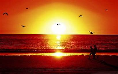 Romantic Beach Sunset Wallpapers Frankenstein Crazy Wallpapers13