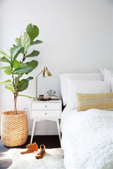 Bedroom Inspiration Plants by 25 Best Ideas About Bedroom Plants On Plants