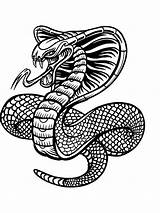 Coloring Pages Snake Zentangle Adults Printable Adult Mycoloring Bright sketch template