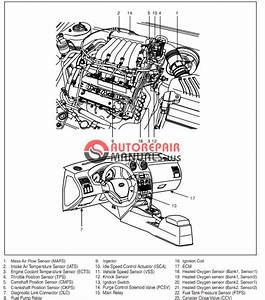 Free Download  Hyundai Coupe Workshop Manual  Fuel System G4gc
