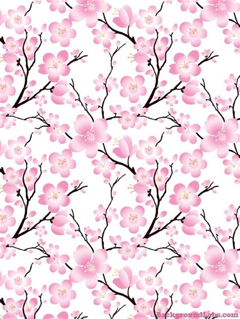 cherry blossom wallpaper gallery