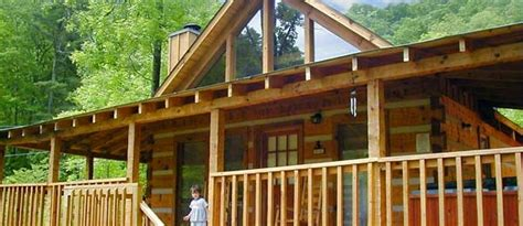 pet friendly cabins pigeon forge bearadise pet friendly cabin pet friendly cabins in