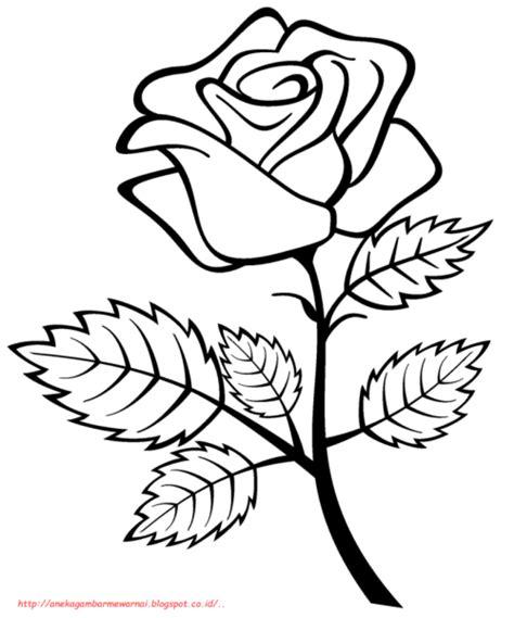 contoh gambar sketsa bunga mudah digambar hamparan