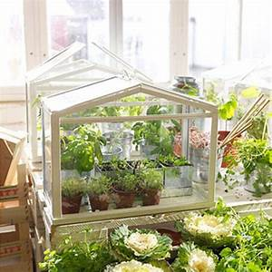 Kleines Gewächshaus Ikea : ber ideen zu selbstgemachtes gew chshaus auf ~ Michelbontemps.com Haus und Dekorationen