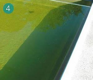 Poolwasser Ist Grün : wurde ihr klares poolwasser nach zugabe von chlor oder ~ Watch28wear.com Haus und Dekorationen