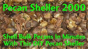 Shell Bulk Pecans In Minutes With This Automatic Pecan