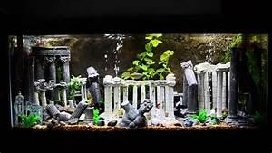75 Gallon Roman Theme Aquarium