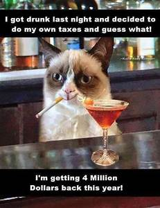 Grumpy cat...taxes...drinking...Funny Pictures Of The Day ...