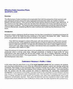 Free 25  Sales Plan Examples In Pdf