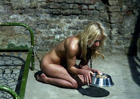Collared Blonde Milf Eating From Dogs Food 17411