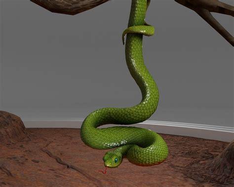 3d Model Viper Snake Cgtrader