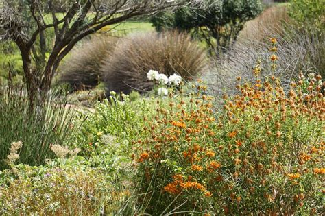 Botanischer Garten Kapstadt by Kapstadt Botanischer Garten Bettina Louis