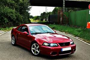 17 Best images about 03/04 Ford Mustang Cobra on Pinterest   Wheels, Grey and Dream cars