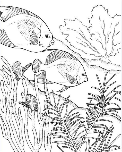 the 25 best ocean coloring pages ideas on pinterest