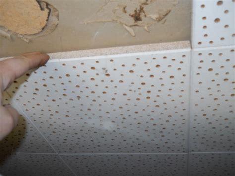 cover asbestos tile alert interior