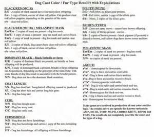 Color DNA Chart French Bulldog