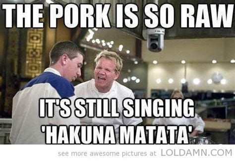 Gordon Ramsay Memes - funny pictures today 10 pics the beef gordon ramsay quotes and haha