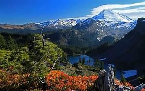 Mount Baker 704295