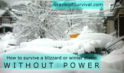 surviving  blizzard  winter storm  power