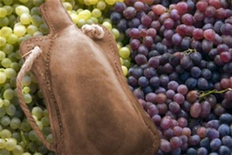 January 20 New Wine, Fresh Wineskins  A Word With The Word