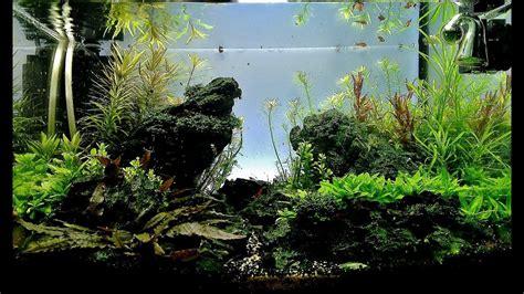 Aquascape Maintenance by Maintenance Aquascape 25l Quot Valley Quot