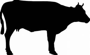 Cattle cliparts