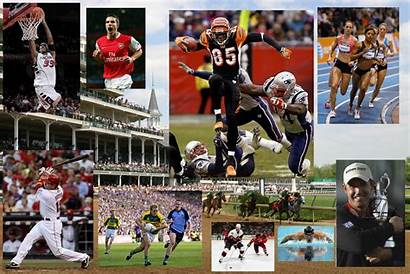 Sports Collage Sport Recreation Fitness Athletes Deportes