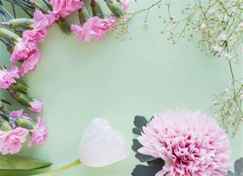 rami di fiori rami di fiori diversi sul tavolo scaricare foto gratis