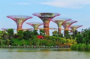 Trip To Gardens By The Bay, Singapore: Bay South Garden ...