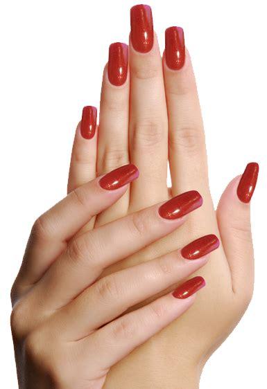 acrylic nails at home kit i nails express