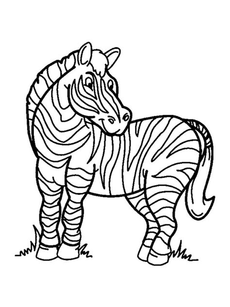 zebra coloring pages   print zebra coloring pages