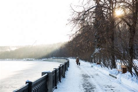 moscow cold sunny winter daystodd prince photography