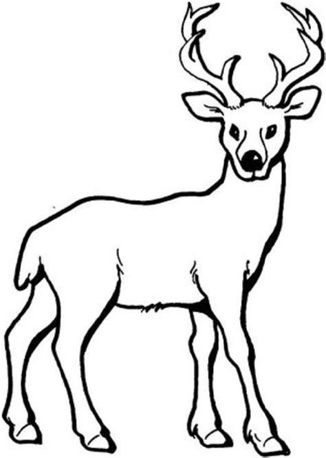 ciervo para colorear Dibujosparacolorear eu